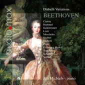 Diabelli Variations by Jan Michiels