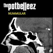 Nummular von The Potbelleez