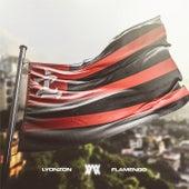 Flamengo de Lyonzon