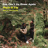You Can't Go Home Again by Nealo