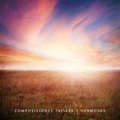 Composiciones Tristes y Hermosas von Various Artists