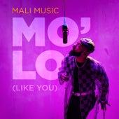 Mo'Lo (Like You) de Mali Music