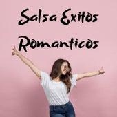 Salsa Éxitos Románticos de Hector Tricoche, Hildemaro, Maelo Ruiz, Nino Segarra, Orquesta Adolescentes, Rey Ruiz, Tito Gomez, Willie Rosario