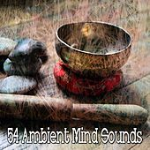 54 Ambient Mind Sounds de Zen Music Garden