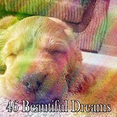 46 Beautiful Dreams by Lullaby Land