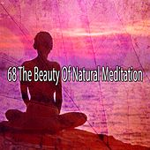 68 The Beauty of Natural Meditation von Massage Therapy Music
