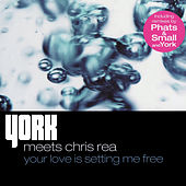 Your Love Is Setting Me Free von York