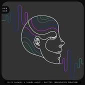 Shifted Frequencies (Remixes) von Felix Raphael