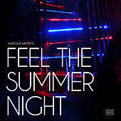 Feel The Summer Night by Various Artists