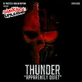 Apparently Quiet by Thunder