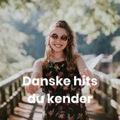 Danske hits du kender van Various Artists