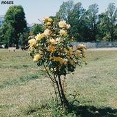 Roses de Guru