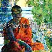 65 Remove Pain of the Mind di Meditation (1)