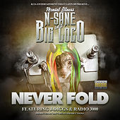 Never Fold (feat. J-Diggs & Radio 3000) by Nsane