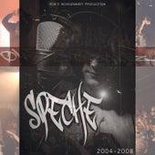 2004-2008 von Speche