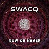 Now Or Never von Swacq