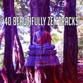 40 Beautifully Zen Tracks de Meditación Música Ambiente