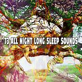 73 All Night Long Sleep Sounds de Best Relaxing SPA Music