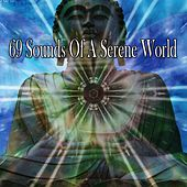 69 Sounds of a Serene World von Massage Therapy Music