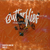 Butterflies Pt. 2 (Wale Remix) by Queen Naija