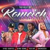 The Best of Romeich Ent by Teejay & Vybz Kartel Ding Dong