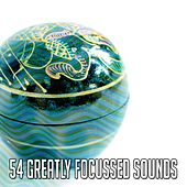 54 Greatly Focussed Sounds de Exam Study Classical Music Orchestra