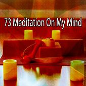 73 Meditation on My Mind by Lullabies for Deep Meditation