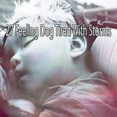 27 Feeling Dog Tired with Storms by Rain Sounds and White Noise