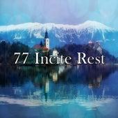 77 Incite Rest de Sleepy Night Music