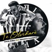 Te Olvidaré (feat. Demarco Flamenco) by Borja Rubio