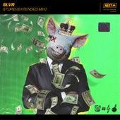 Stupid (Extended Mix) von Slvr