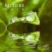 Relaxing Rain de White Noise Research (1)