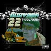 22 by La Guayaba