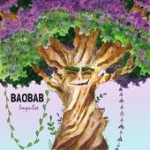 Baobab Impulse de Paul Marx