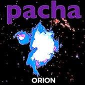 Orion de Pacha Massive