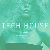 Tech House Slaves (Big Groovy Collection) by Various Artists