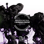 I Wanna Know (Remixes) by Smallistic