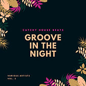 Groove In The Night (Catchy House Beats), Vol. 3 von Various Artists
