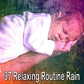 37 Relaxing Routine Rain by Rain Sounds and White Noise