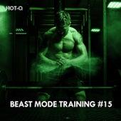 Beast Mode Training, Vol. 15 von Hot Q