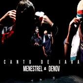 Canto de Iara (Remix) by Menestrel DJ LM