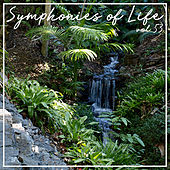 Symphonies of Life, Vol. 53 - Gershwin: Rhapsody in Blue, Concerto, An American in Paris by Stuttgart Radio Symphony Orchestra