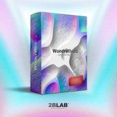 WondrelBeats Drumkit, Vol. 2 (Contest Entrys Compilation) de WondrelBeats