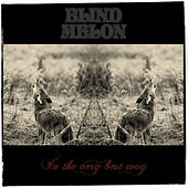 In the Very Best Way de Blind Melon
