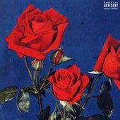 Rose Petals by Peezy