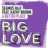 A Better Place by Seamus Haji