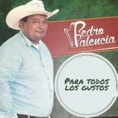 Para Todos Los Gustos van Pedro Palencia