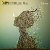 Madrecita de Buddha Sounds
