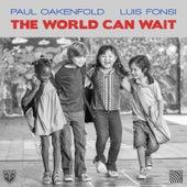 The World Can Wait by Paul Oakenfold