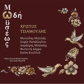 Odi Moiseos von Christos Tsiamoulis